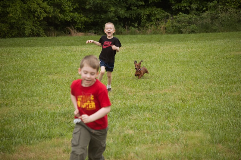 Always loved this photo of Garrett and Nate being pursued by the late Bella.  They always loved to take Bella out for a romp in the back yard.